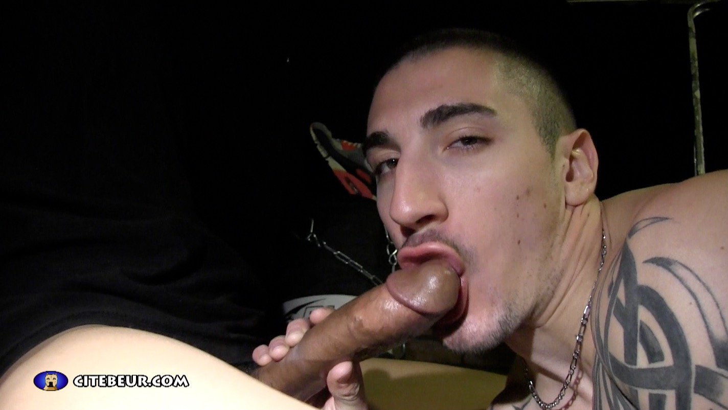 gay sex rebeu amateur gay sexe